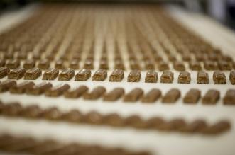 Nestle chocolate factory